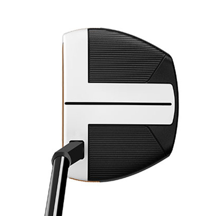 TAYLORMADE - PUTTER SPIDER FCG CHARCOAL/WHITE 3 - 2